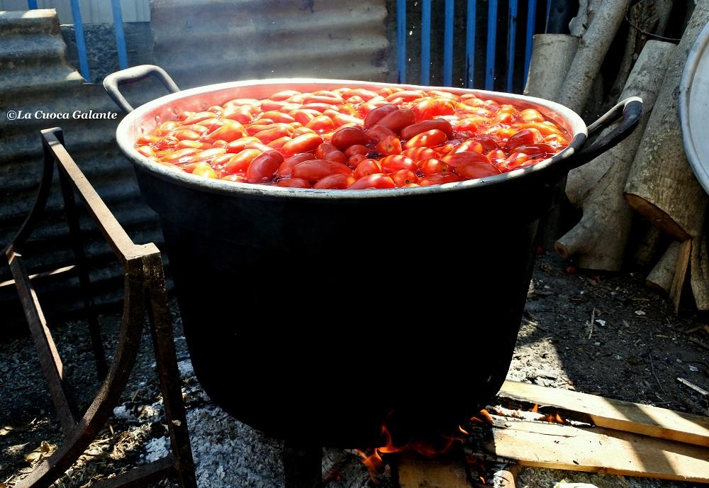 tinozza-di-pomodori
