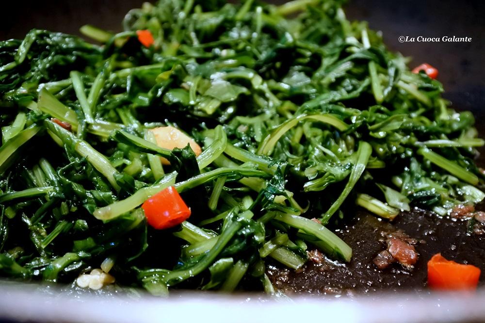 cicoria ripassata - aglio e olio