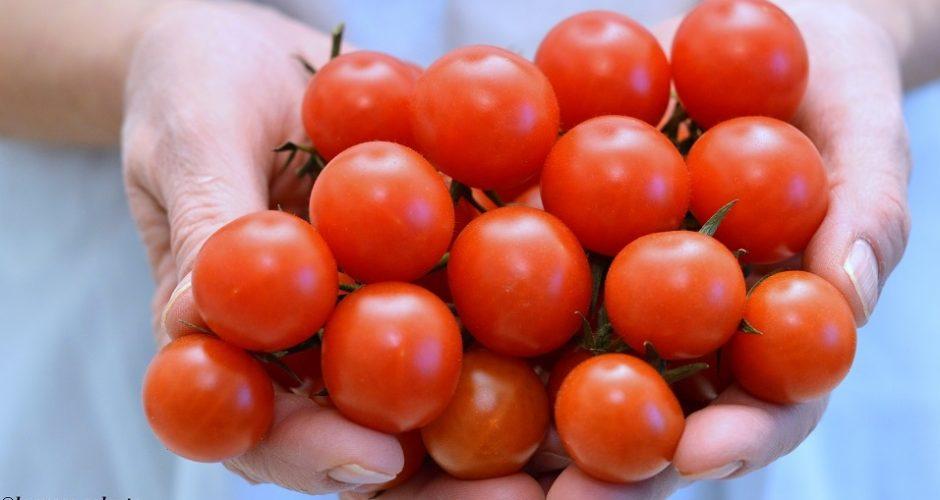 7 ricette perfette con il sugo di pomodoro !!