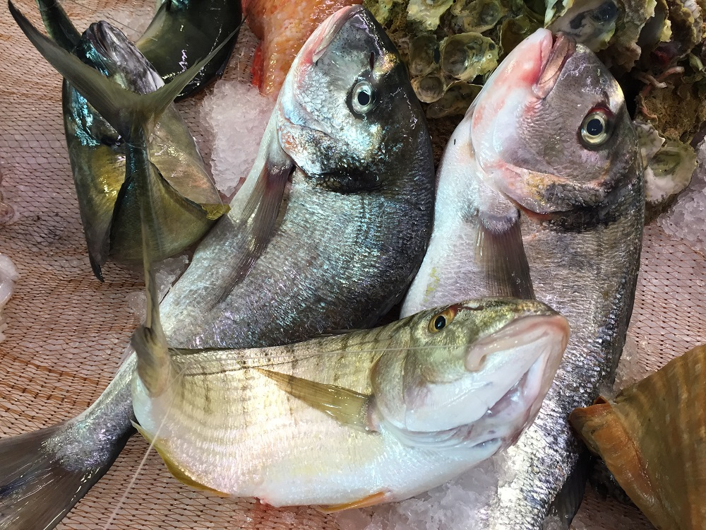 Piramide alimentare - pesce